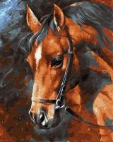 Картины по номерам 40х50 Голова лошади