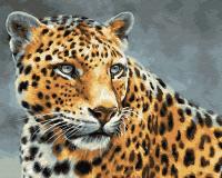Картины по номерам 40х50 Красавец Гепард
