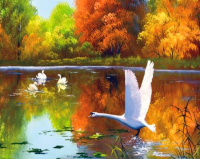 Картины по номерам 40х50 Лебеди осенью