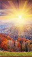 Осенний лес - Электрообогреватель настенный «Домашний очаг»
