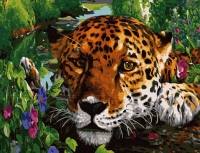 Картины по номерам 40х50 Пятнистый хищник на отдыхе