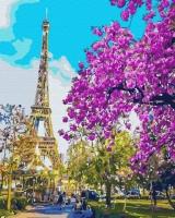 Картины по номерам 40х50 Романтичный париж