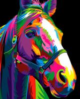 Картины по номерам 40х50 Цветная лошадь