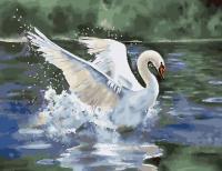 Картины по номерам 40х50 Лебедь белая
