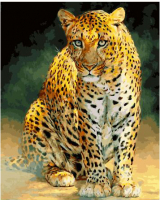 Картины по номерам 40х50 Южноаравийский леопард